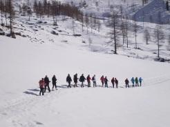 Im Gänsemarsch auf den Weg zur Austriahütte