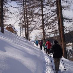 Austriahütte